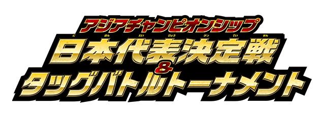 日本代表決定戦タッグバトルトーナメント